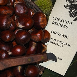 Fresh Chestnut Gift Package